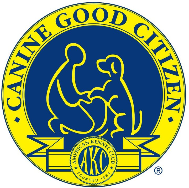 Akc Canine Good Citizen Cgc Prep Pack Of Paws Professional Dog